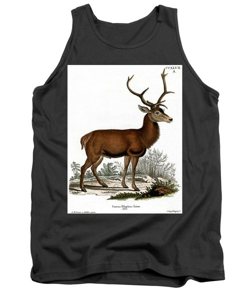 Red Deer Circa 19th Century Colored Engraving Tank Top