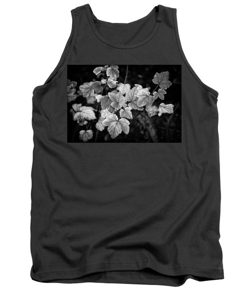 Slipping Into Fall Tank Top