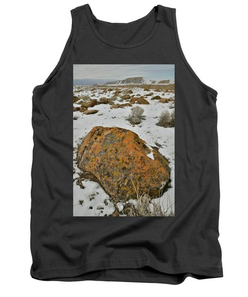 The Lichen Covered Boulders Of The Book Cliffs Tank Top