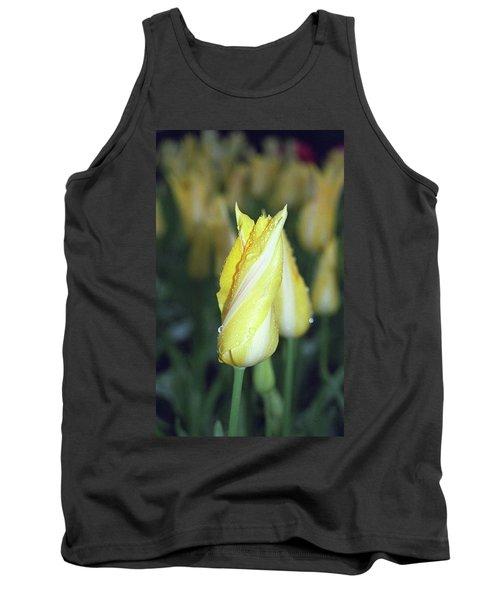 Twisted Yellow Tulip Tank Top
