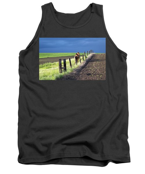 Two Horses In The Palouse Tank Top