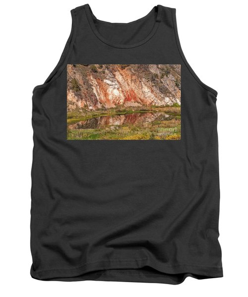 Vibrant Reflections On A Calm Pond Tank Top