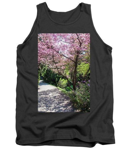 Walk In Spring Eden. Pink Bloom Of Dogwood Tree Tank Top