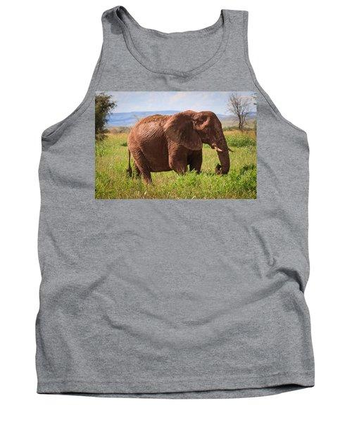 African Desert Elephant Tank Top