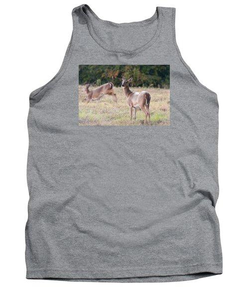 Deer At Paynes Prairie Tank Top