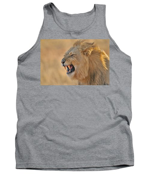 120118p081 Tank Top by Arterra Picture Library