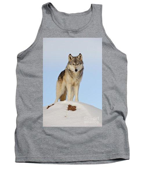 Wolf In Winter Tank Top