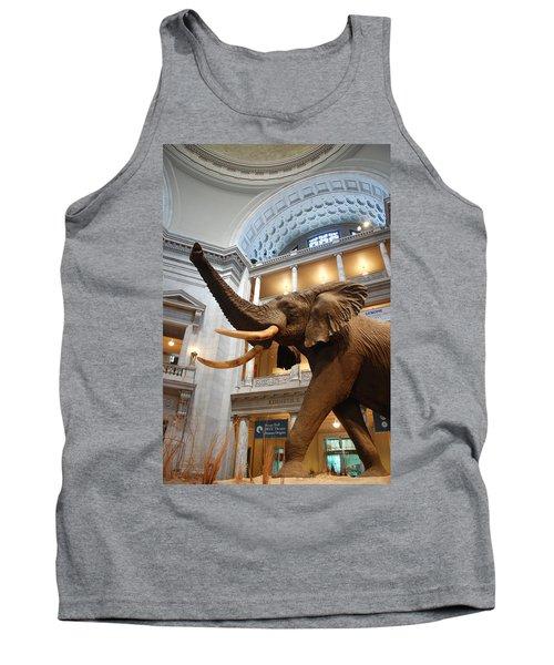 Bull Elephant In Natural History Rotunda Tank Top