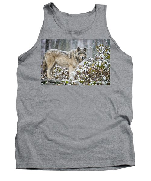 Timber Wolf Tank Top by Michael Cummings