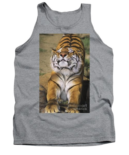 A Tough Day Siberian Tiger Endangered Species Wildlife Rescue Tank Top
