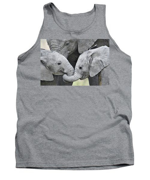 African Elephant Calves Loxodonta Tank Top