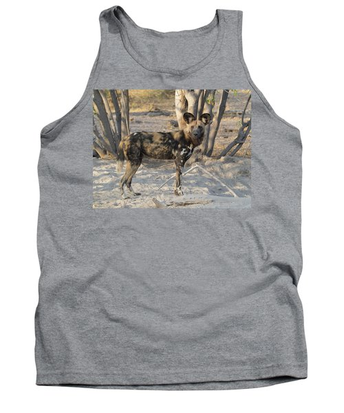 African Wild Dog Lycaon Pictus Standing Tank Top