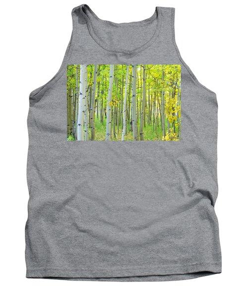 Aspen Tree Forest Autumn Time  Tank Top