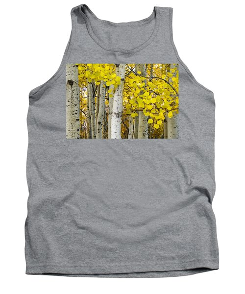 Aspens At Autumn Tank Top