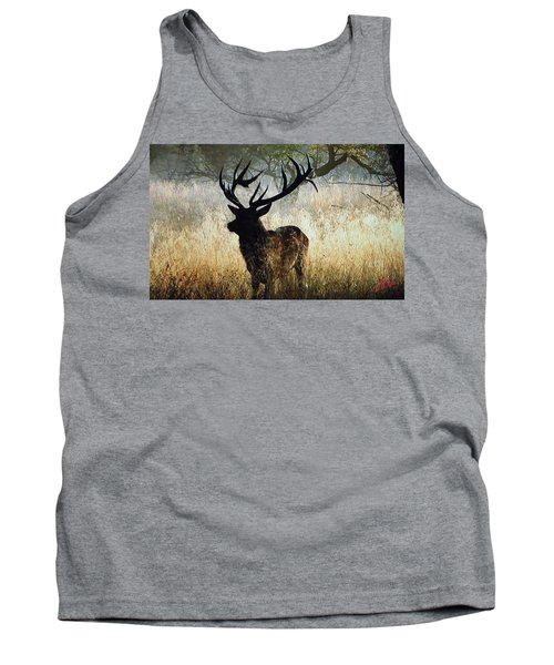 Tank Top featuring the photograph Autumn Forest Walk In Denmark  by Colette V Hera  Guggenheim