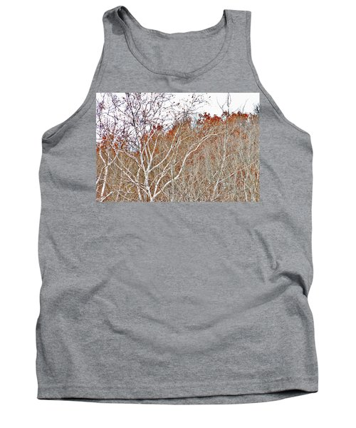 Autumn Sycamores Tank Top by Bruce Patrick Smith