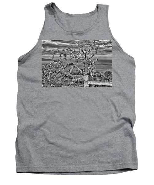 Bare Tree In Hana Tank Top