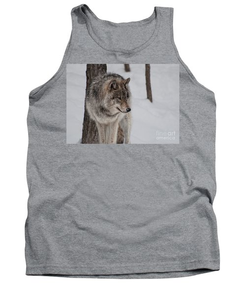 Tank Top featuring the photograph Big Bad Wolf by Bianca Nadeau