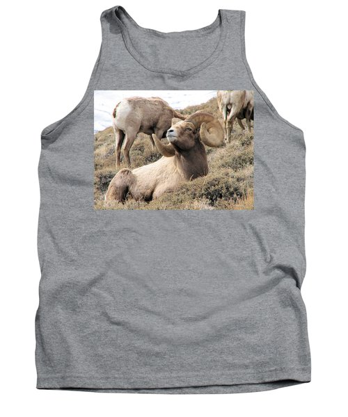 Big Bighorn Ram Tank Top