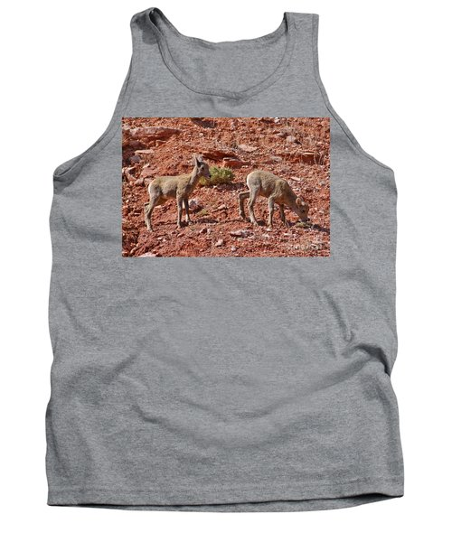 Tank Top featuring the photograph Bighorn Canyon Sheep Wyoming by Janice Rae Pariza