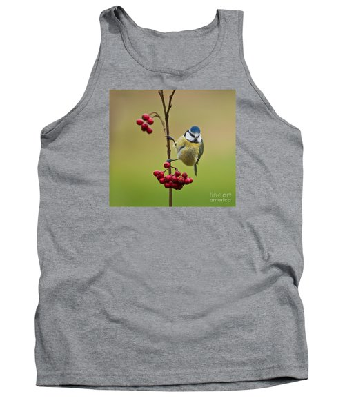 Blue Tit With Hawthorn Berries Tank Top