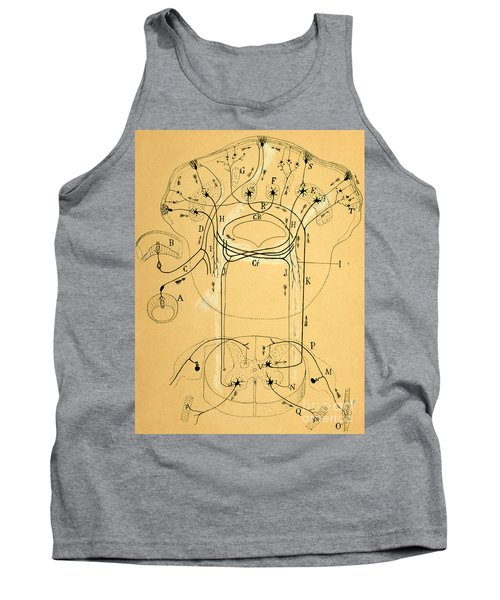Brain Vestibular Sensor Connections By Cajal 1899 Tank Top