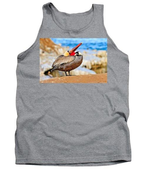 Brown Pelican Mating Season Display Tank Top