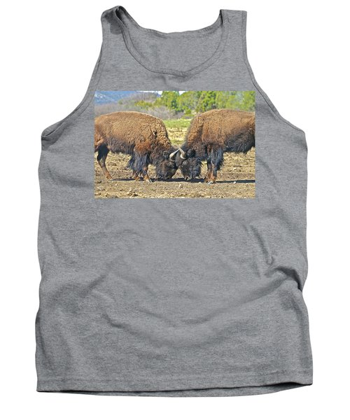 Buffaloes At Play Tank Top