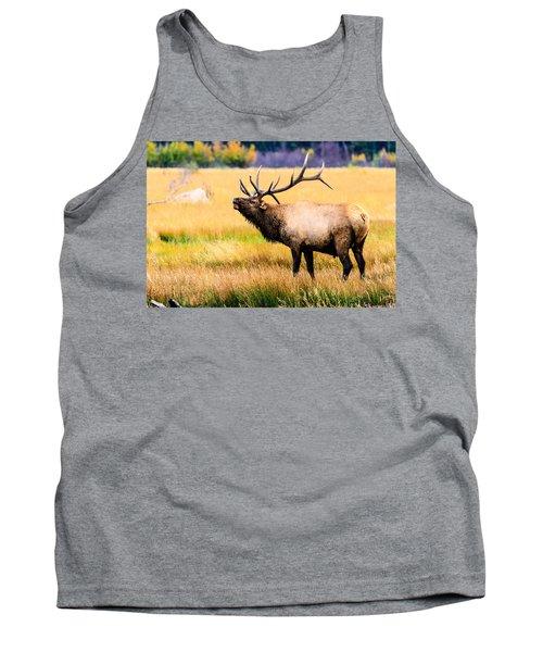 Bull Elk - Colorado Tank Top