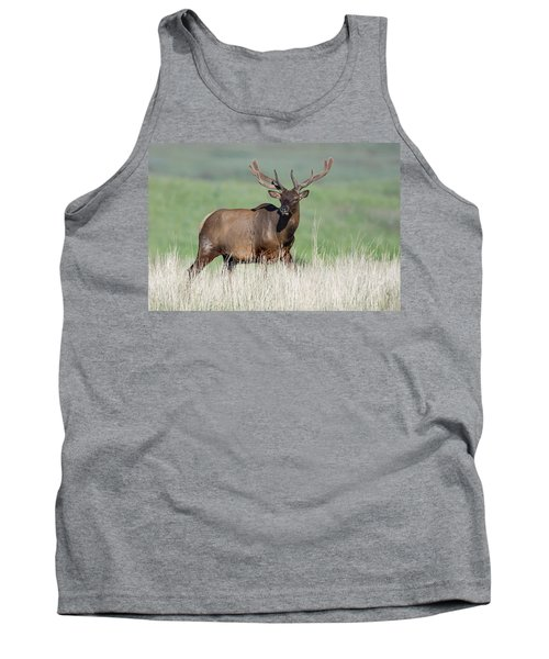 Tank Top featuring the photograph Bull Elk In Velvet by Jack Bell