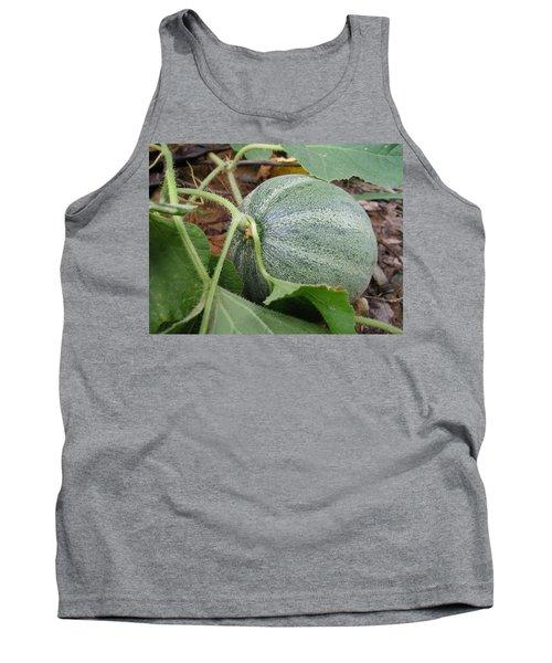Cantaloupe  Tank Top