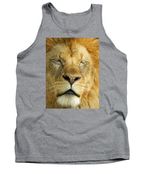 Cat Nap Tank Top