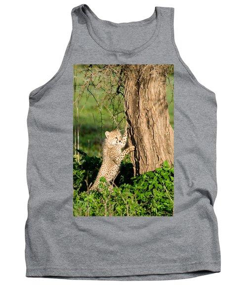 Cheetah Cub Acinonyx Jubatus Climbing Tank Top