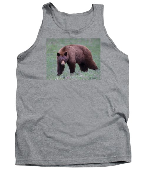 Cinnamon Black Bear Tank Top