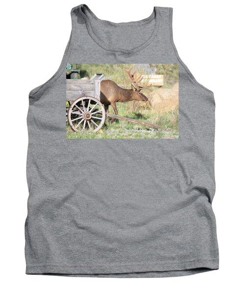 Elk Drawn Carriage Tank Top