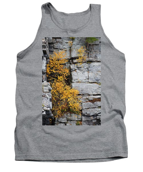 Fall Foliage Colors 01 Tank Top