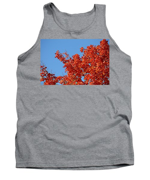 Fall Foliage Colors 20 Tank Top