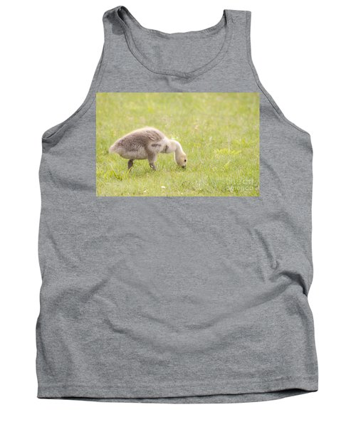 Tank Top featuring the photograph Gosling by Jeannette Hunt