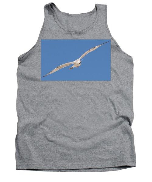 Gull In Flight  Tank Top