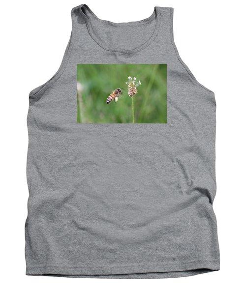 Honeybee And English Plantain Tank Top by Lucinda VanVleck