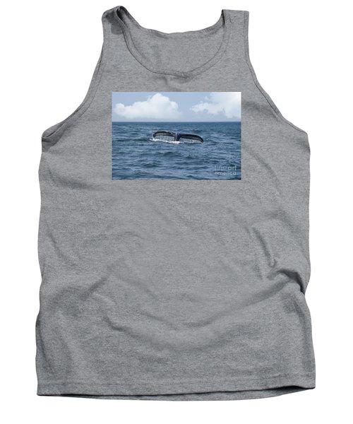 Humpback Whale Fin Tank Top by Juli Scalzi
