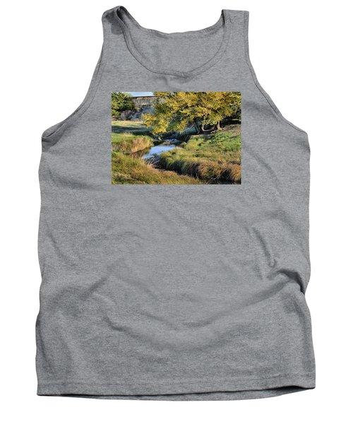 Jordan Creek Autumn Tank Top
