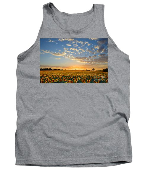 Kansas Sunflowers At Sunset Tank Top by Catherine Sherman