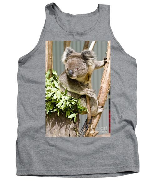 Koala Tank Top