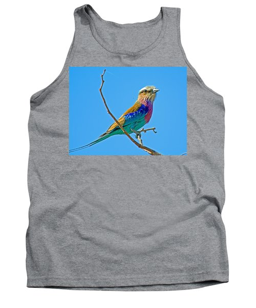 Lilac-breasted Roller In Kruger National Park-south Africa Tank Top
