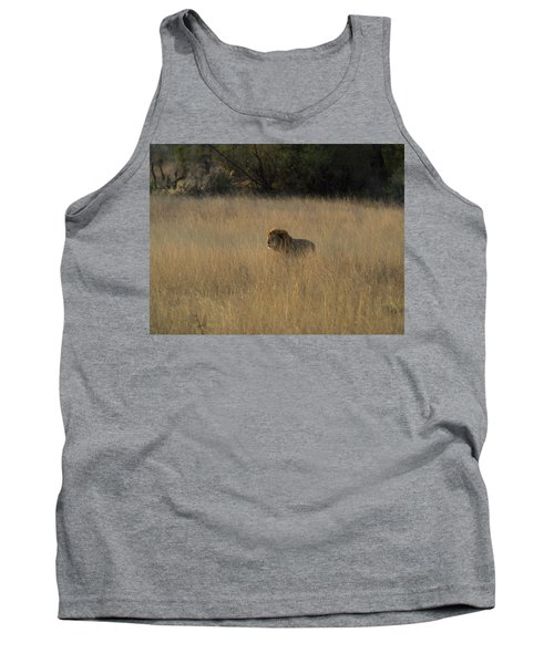 Lion Panthera Leo In Tall Grass That Tank Top