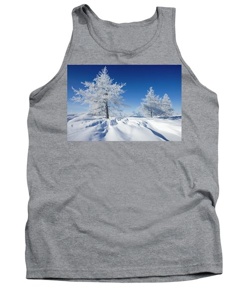 Lodgepole Pine Stand Tank Top