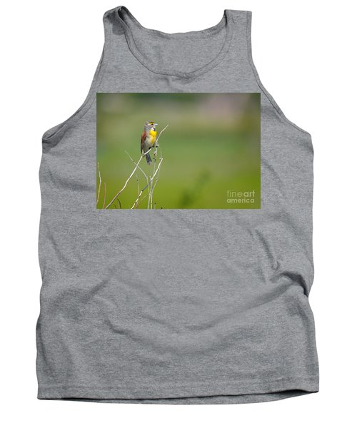 Male Dickcissel Tank Top