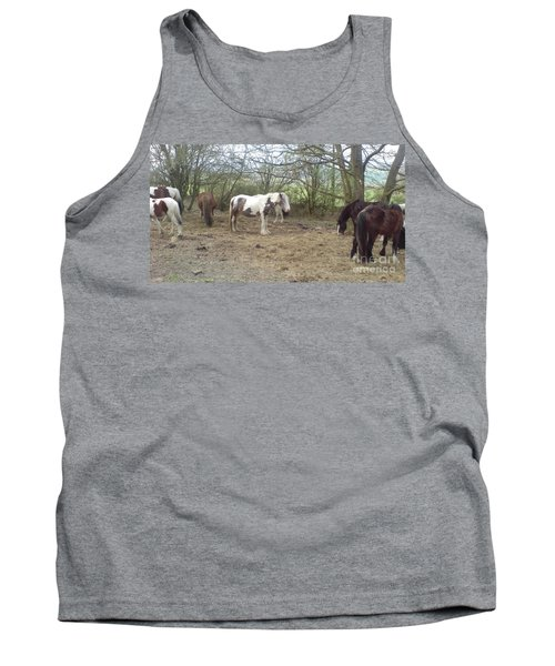 May Hill Ponies 1 Tank Top