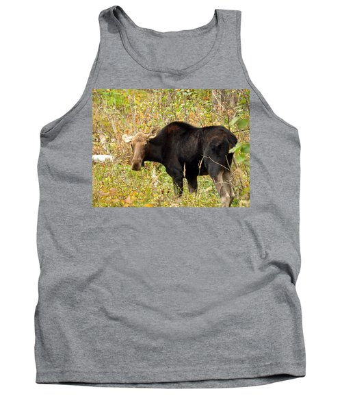 Tank Top featuring the photograph Moose by James Peterson
